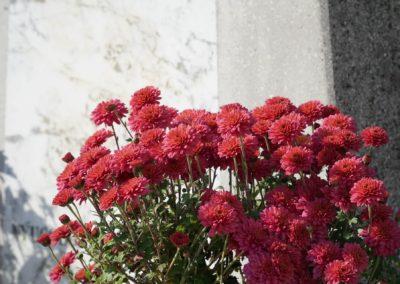 Besenyői temető_2