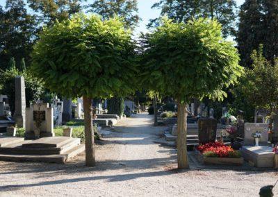 Göcsej temető_1