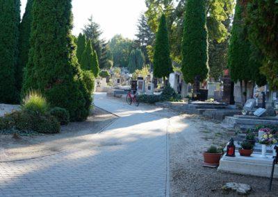 Göcsej temető_4