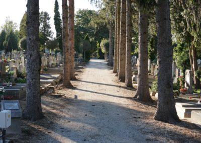 Göcsej temető_7
