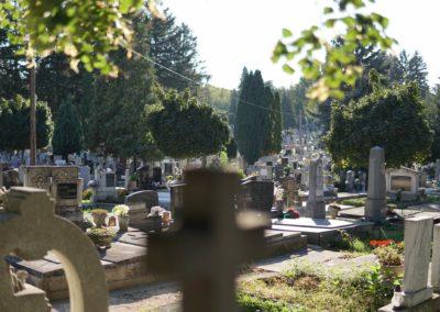 Göcsej temető_8