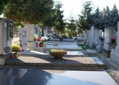 Göcsej temető_9